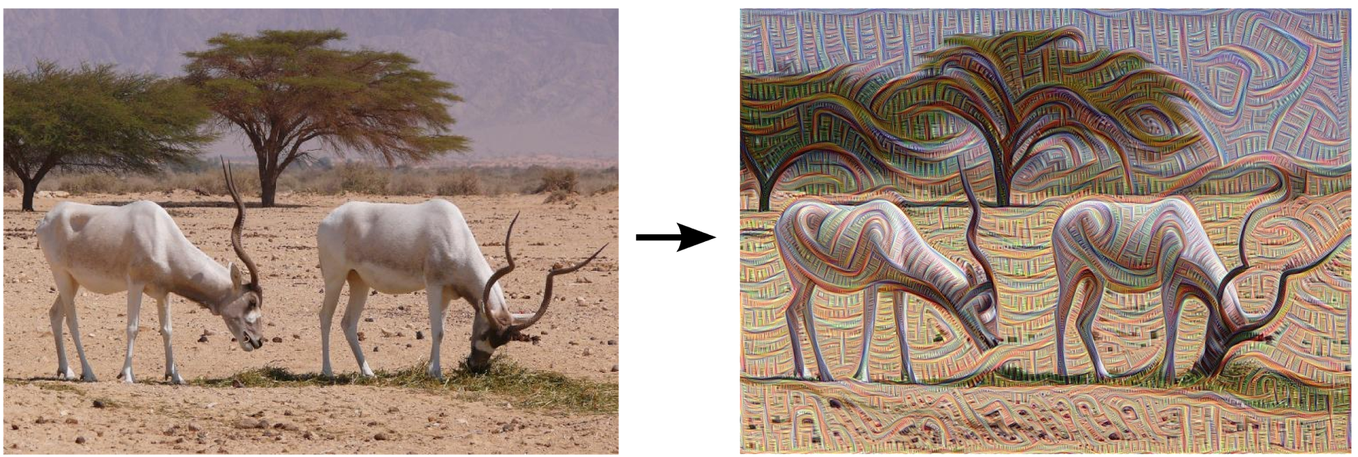 Inceptionism: Going deeper into Neural Networks